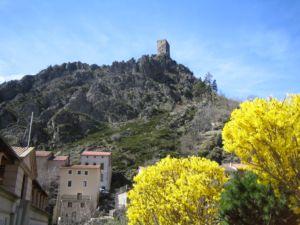 vue_village